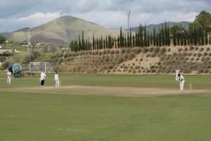 Cricket in Malaga